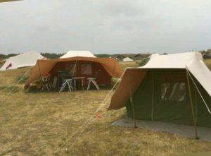 De Kemphaan en Vergrote Zilvermeeuw op Stortemelk Vlieland